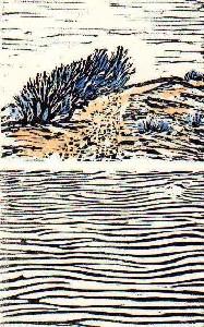 Lecomte,Dominique-Dans les dunes