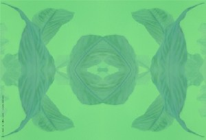 leaves (2)