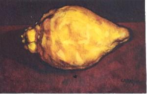Cabayol,Josep Maria-Lemon