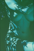 ancone,corrie-Blue Nude