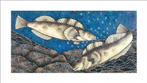 Oleary,Diane-Lingcod
