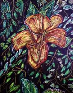 Hibiscus in Oil Pastels