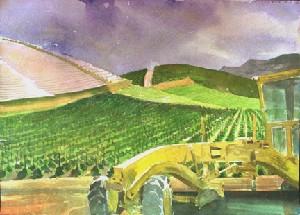 IRVINE FARM #1