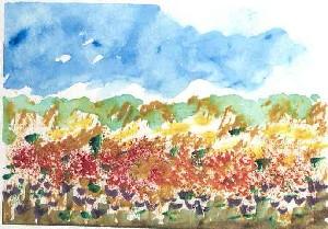 Seasons I - Spring
