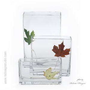 glass and leaf