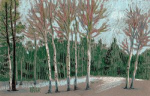 Maier,Donald-Aspen in the Snow