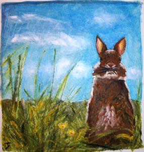 Rabbit in field