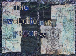 the evolutionary process