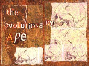 the evolutionary ape