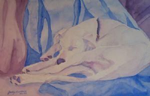 On Fallen Blankets