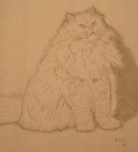 Persian Cat 3