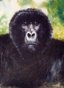 Low Land Gorilla
