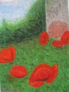 Poppy in garden 1