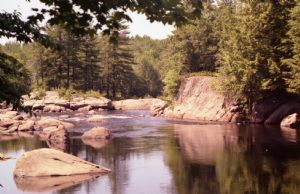 Moose River Reflections
