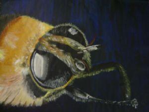 Bumble Bee Close- Up