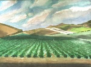 IRVINE FARM #2