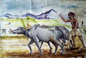 T,SUJIL-Farmer