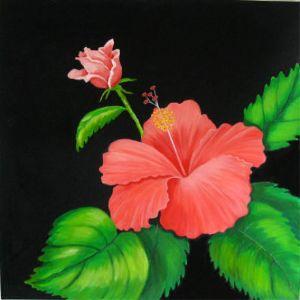 Beaulieu,Palyn-Pink Hibiscus