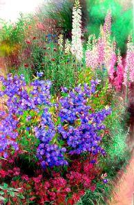 Windbell flower