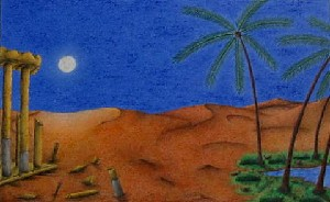 Plenilunio nel deserto