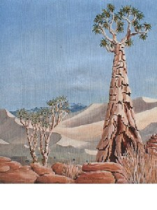 Kortenbout,Gerard-Quiver tree ,Namibia