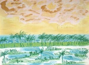 Coco field at Trancoso beach