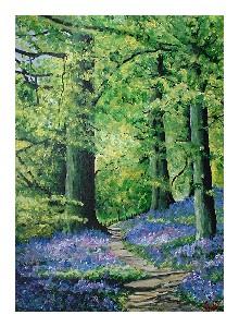 Bowler,Jacki-Woodland Walk