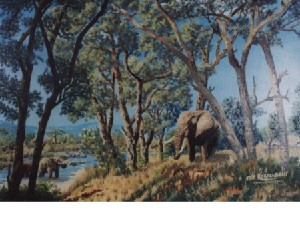 Kortenbout,Gerard-Jackallberry trees
