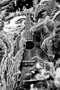 mitzel,sam-Ukulele Guitar
