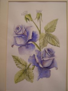 price,ray-blue blue roses