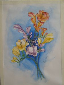 price,ray-freesias for mom