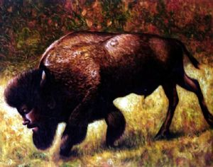 American bison with selfportrait