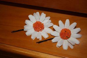 Moran,Zoe-Hair pins