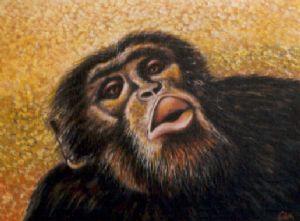 Chimpanzee portrait (5)