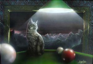 The cat on  the billard