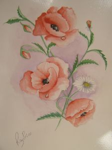 poppies&daisey for suzie