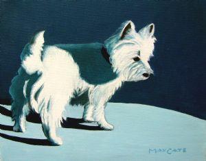 Doggie In The Sun