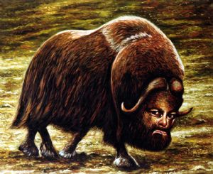 Civa,Dan-Musk ox  with selfportrait