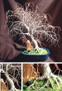 Hickory in Blue Base - Wire Tree Sculpture, by Sal Villano