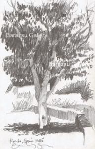Barazsu,Dave-Tree Ronda Spain