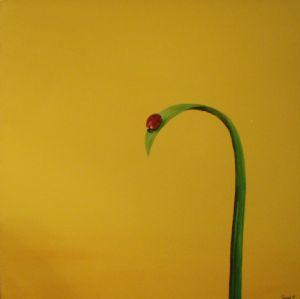 ladybug presipice