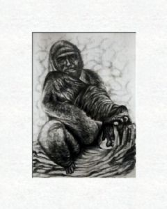Gorilla with selfportrait