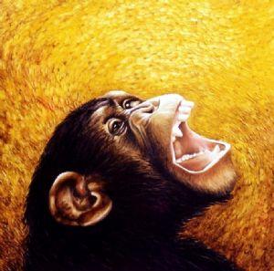 Chimpanzee portrait (4)