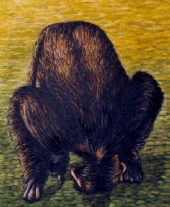 Chimpanzee bowing
