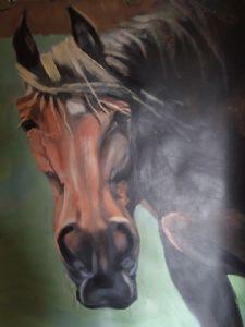 HOFFMAN,Paulus-horse
