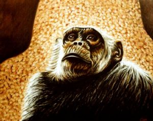Chimpanzee portrait (1)