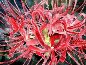 spider lily red flower painting