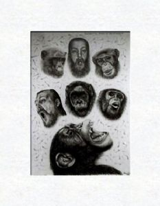 Chimpanzees with selfportraits