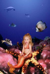 Garneau,Dave-Little Mermaid