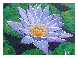 Lilac Waterlily
